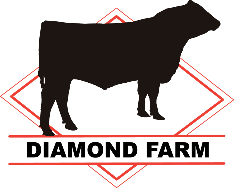 Diamond Farm Logo